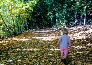 When You Can't Take Any More, Take Your Toddler Hiking